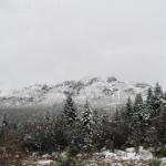 下雪了!Sudden Snowfall