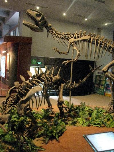 恐龙!Dinosaurs!
